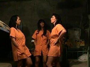 Peliculas porno de violencia lesbica Lesbianas Prision Porno Teatroporno Com